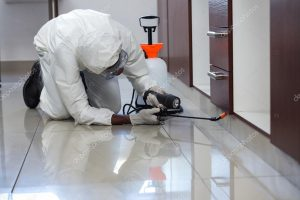 depositphotos_106107102-stock-photo-pest-control-man-spraying-pesticide